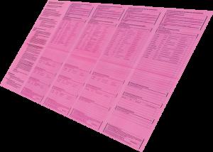 Muster-Stimmzettel